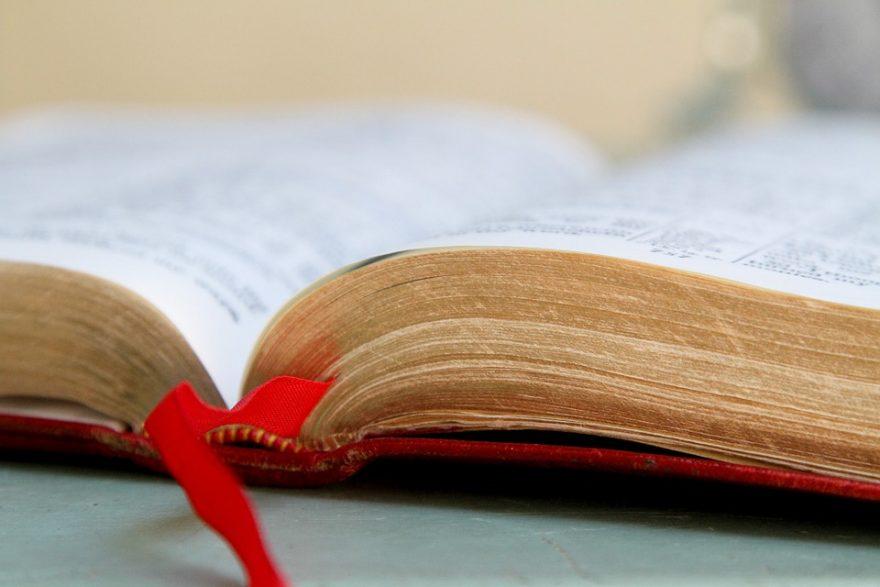 literary-essay-sample