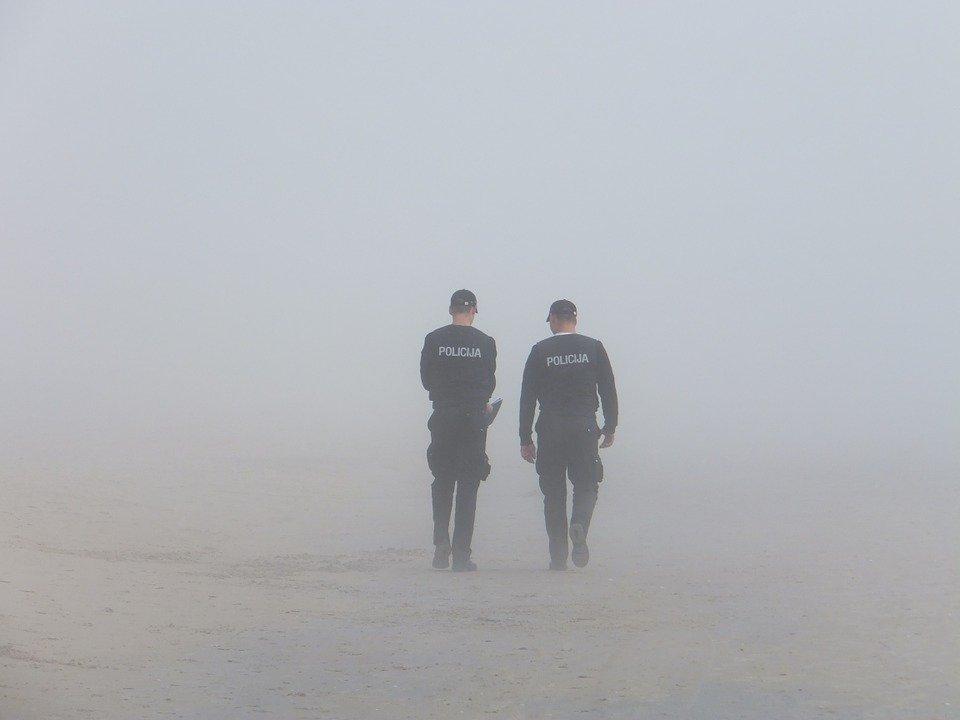 apa-paper-sample-the-police